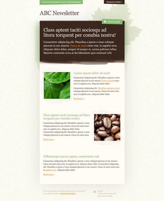 newsletter-template-17